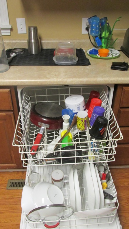 Dishwasher Full of Clean Dishes