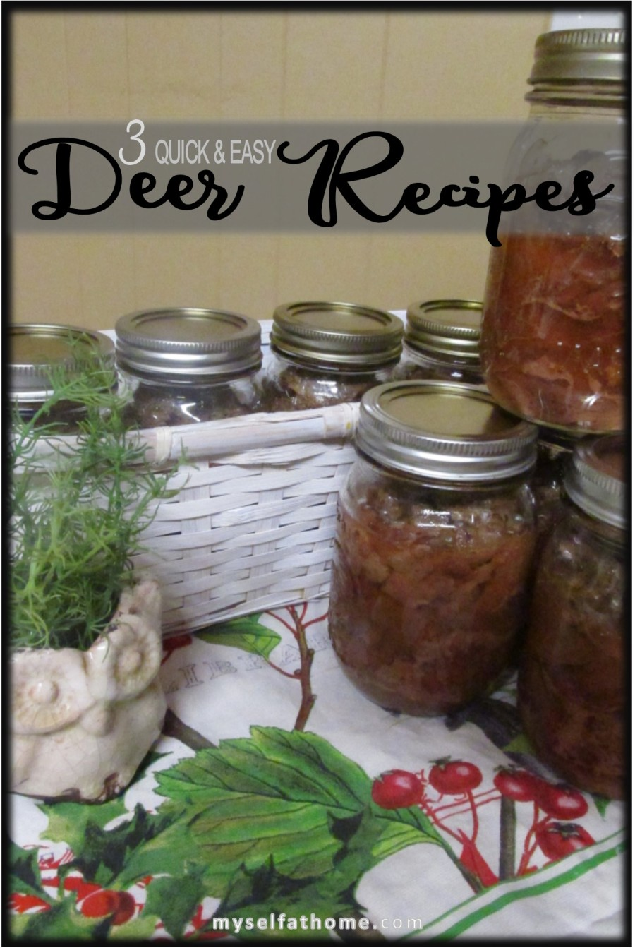 Quick Easy Deer Recipes